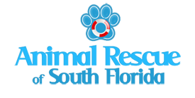 Animal Rescue Of South Florida