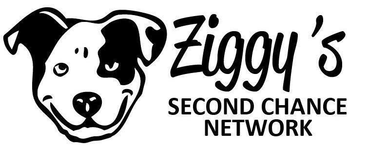Ziggy's Second Chance Network