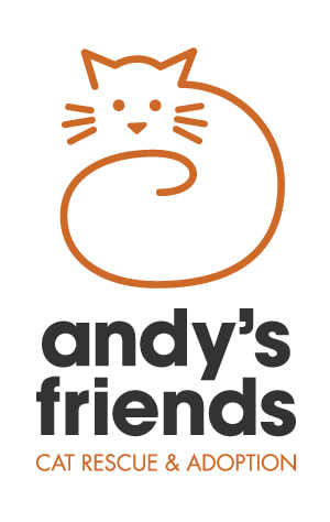 Andy's Friends, Inc.