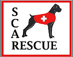 Second Chance Animal Rescue / Boxer Rescue
