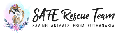 SAFE Rescue Team