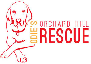 Odies Orchard Hill Rescue