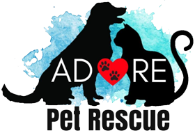 Animals Deserving Of Rescue Everywhere, Inc.