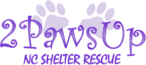 Two Paws Up Nc Shelter Rescue