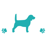 Rescue + Freedom Project - Pa