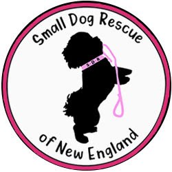 Small Dog Rescue Of New England Inc.