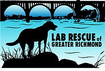 Lab Rescue Of Greater Richmond