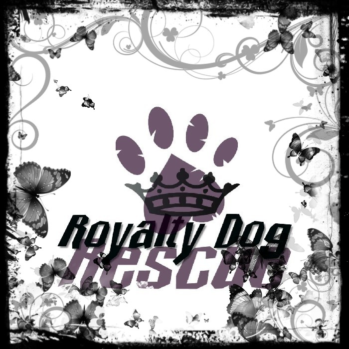 Royalty Dog Rescue