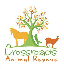 Care - Crossroads Animal Rescue