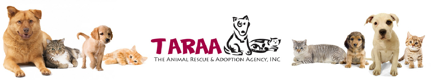 The Animal Rescue & Adoption Agency (taraa)