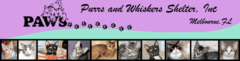 Purrs And Whiskers Shelter, Inc. (paws)