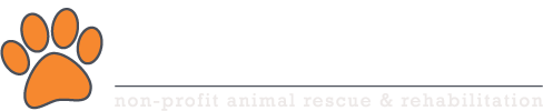 Second Chance Rescue & Rehoming