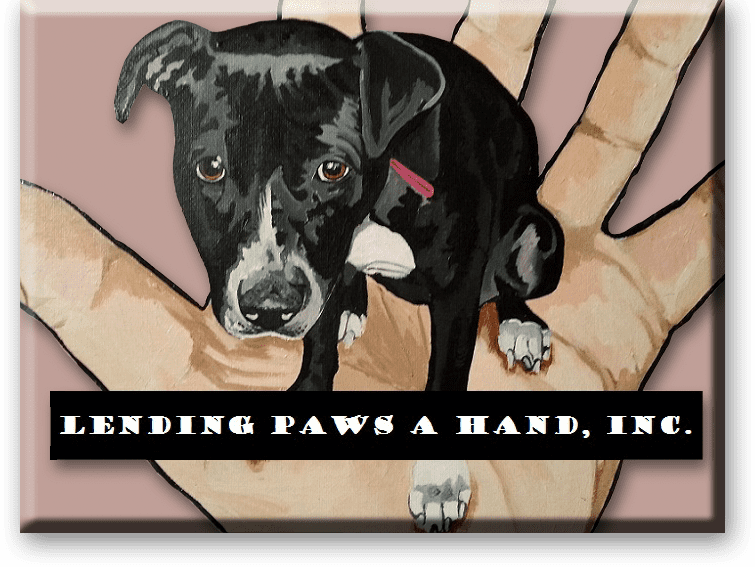 Lending Paws A Hand