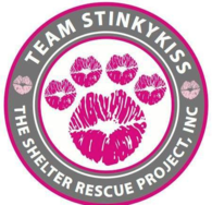 Team Stinkykiss Shelter Rescue
