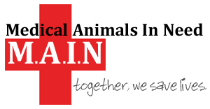 Medical Animals In Need