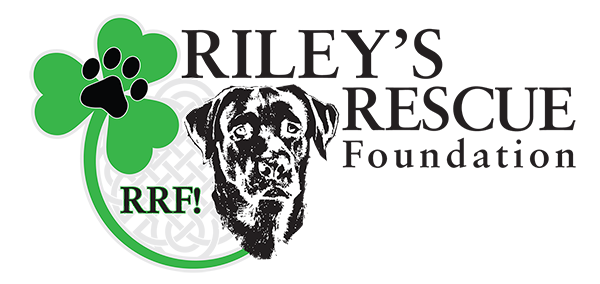 Riley's Rescue Foundation - RRF