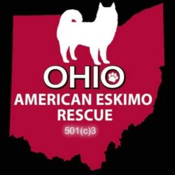 Eskie Rescuers United American Eskimo Dog Rescue, Inc. - Ohio