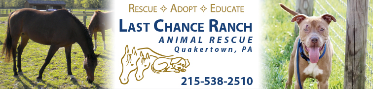 Last Chance Ranch Animal Rescue