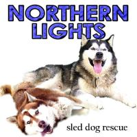 Northern Lights Sled Dog Rescue Inc.