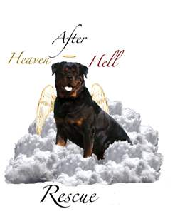 Heaven After Hell Rescue