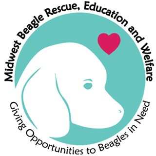 Midwest Beagle Rescue, Education And Welfare - Western Pa