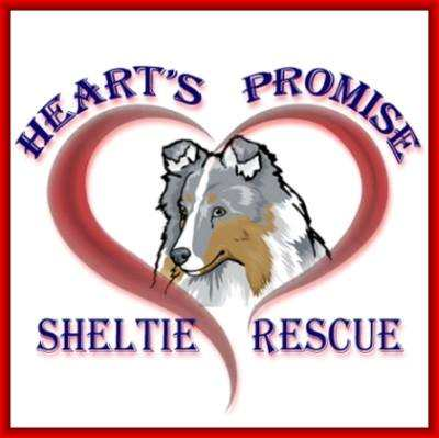 Heart's Promise Sheltie Rescue