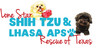 Lone Star Shih Tzu And Lhasa Apso Rescue